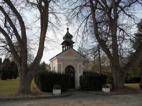 Malenovice (Suchdol)