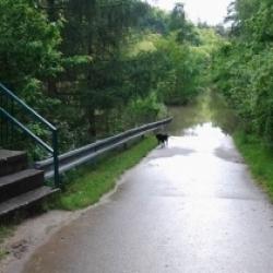 Silnice do vody